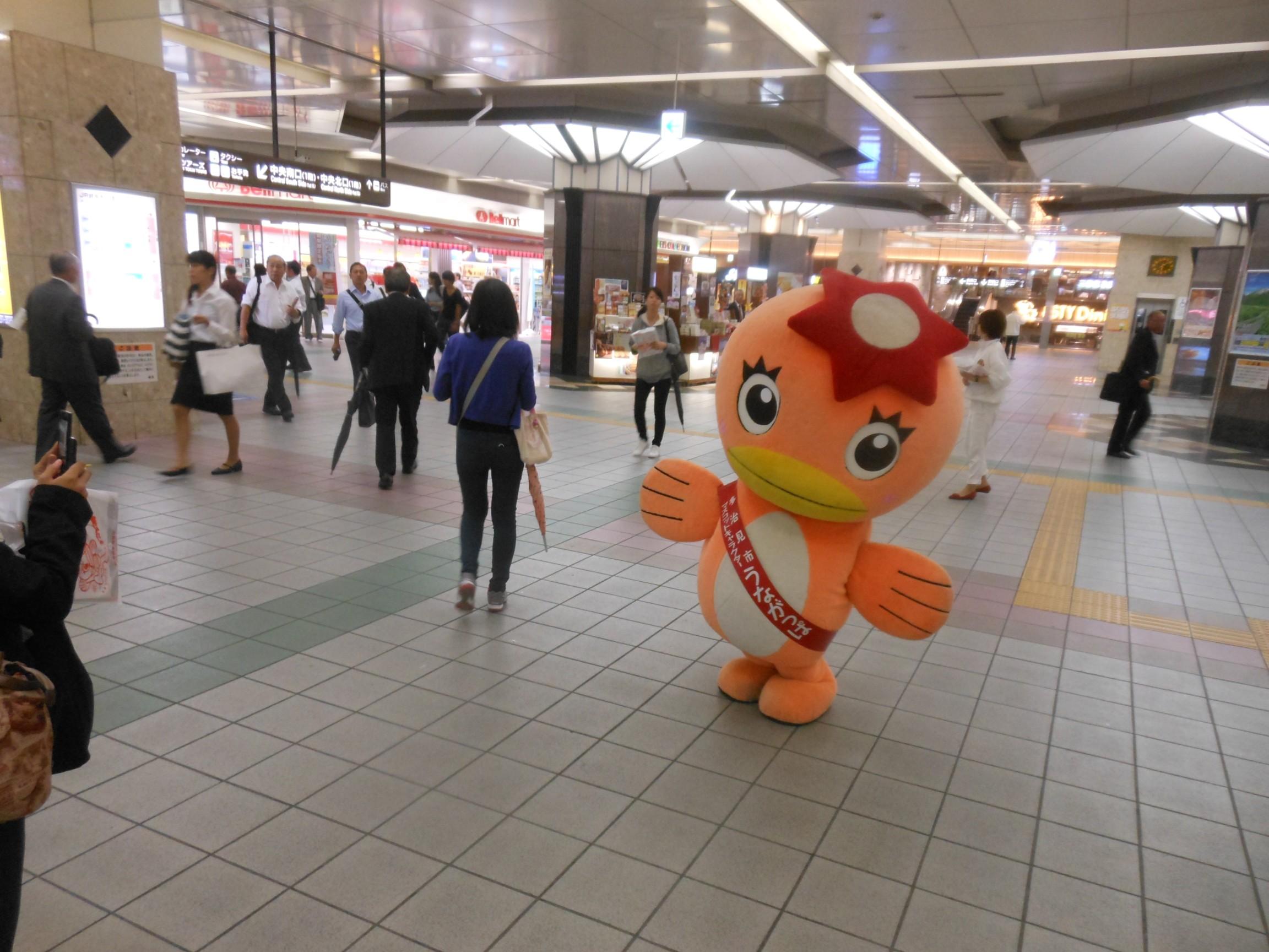 美濃焼祭PR